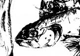 Fish-Screen-print-Karen-Stansfield